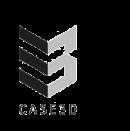 Case 3D